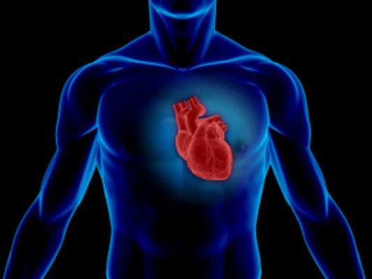 Лечение мёдом сердечных заболеваний